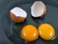 huevo-campero-con-2-yemas